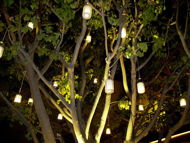 rockwell-tree